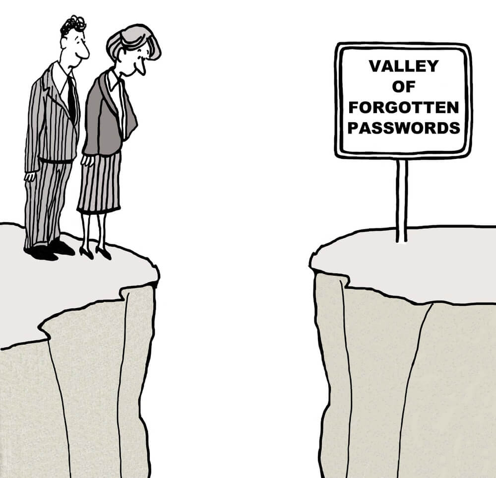 Valley of Forgotten Passwords